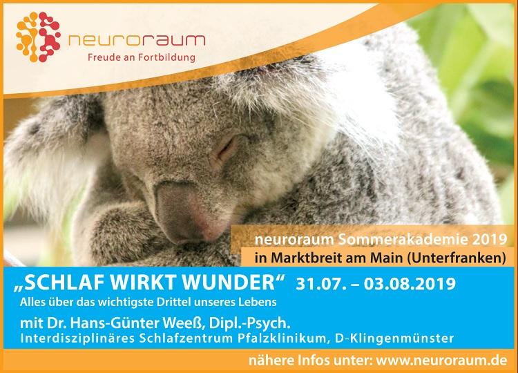 Neuroraum Sommerakademie 2019 mit Dr. Hans-Günter Weeß
